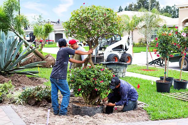 San Diego Custom Residential Landscaping